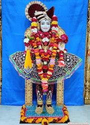 Mandvi Temple Murti Darshan