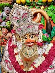 Sarangpur Temple Murti Darshan